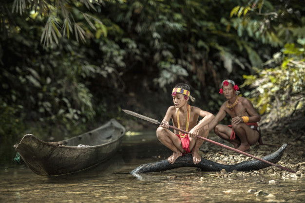 Ecological Anthropology : Cultural and Biological Dimensions